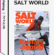 SALT WORLD 定期購読