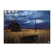 キサラヅ[共生限界:1998-2002]・平野耕作