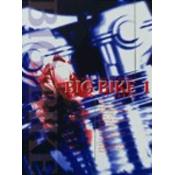 ビッグバイク・プロダクト・オブ・ジャパン1