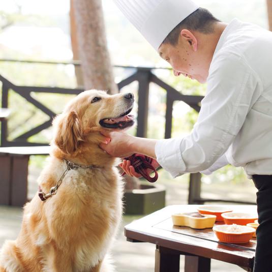 犬専用メニューに広大なドックラン。犬連れOK宿がものすごく進化している [レトリーバー]