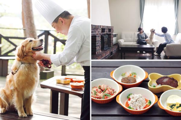 那須高原 TOWA ピュアコテージ|犬専用メニューに広大なドックラン。犬連れOK宿がものすごく進化している [レトリーバー]