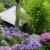 【時期をチェック!】梅雨の季節が待ち遠しくなる。古都・鎌倉で紫陽花めぐり [アウトドア]