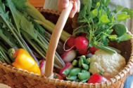 暮らし上手のおいしい野菜