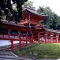 【20年に一度のチャンス!】春日大社・式年造替で、国宝・御本殿を特別参拝【ついでに行きたい日本最古の神社・大神神社】
