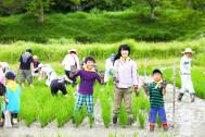 田んぼの世話って、子供の頃に体験した方がいいのでは?【暮らし上手が、田んぼの学校を体験】