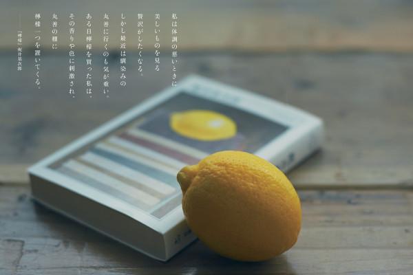 """伝統と最先端がまじりあう """"生まれ変わった""""京都の最新スポット4選"""