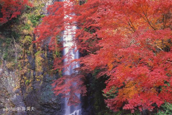 【写真家が教える3つのコツ】秋はカメラを片手に旅に出よう! 「滝&紅葉」で一味違う写真を撮る