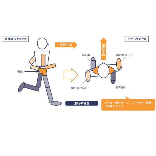 走りのサイエンス