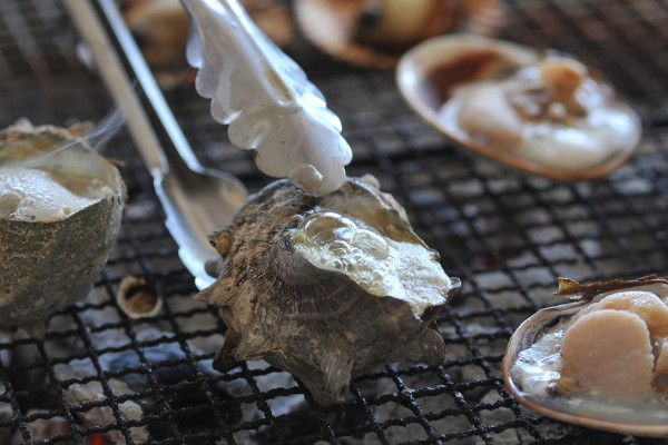 鳥羽の海女小屋で、直接海産物を食べる方法