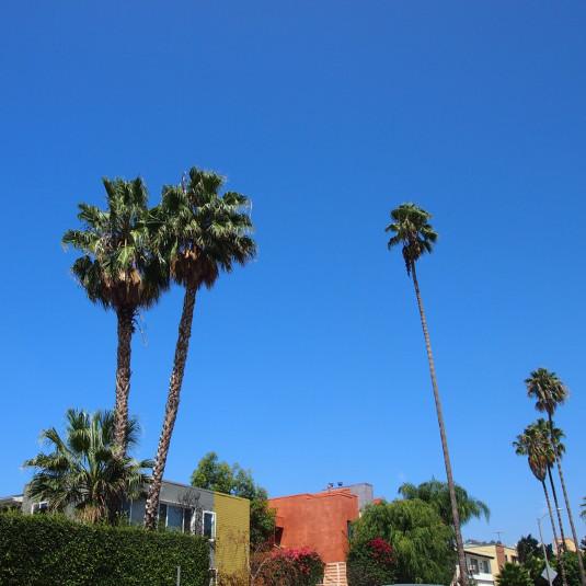 LAの人気セレクトショップクルージングと売れ線アイテム調査の旅 #1 Self Edge