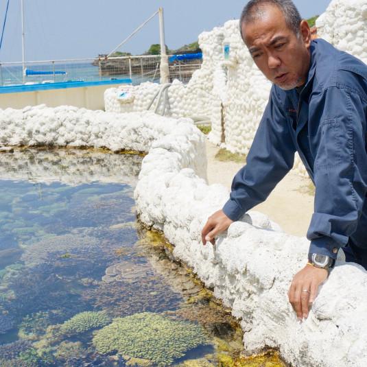 沖縄の海に、あなたのサンゴを植えませんか?【金城さんの、さんご畑】
