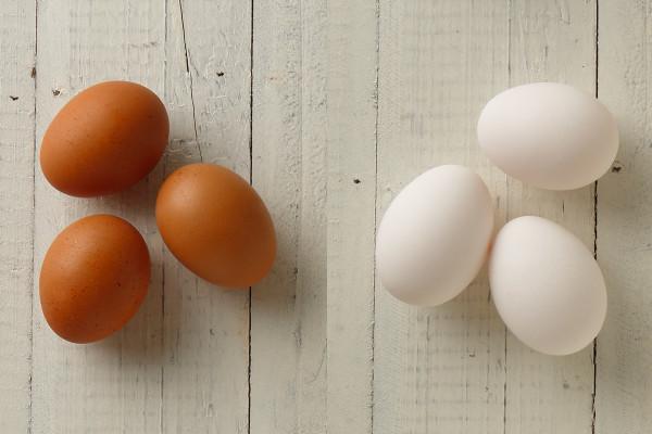 白い卵と赤い卵、どっちが栄養価が高い? 【勘違いしてるかもしれない食材選び】
