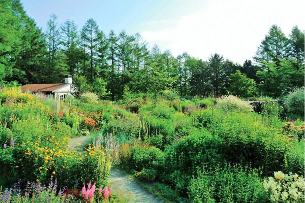 まるでおとぎ話の世界! 五感で癒される「北海道ガーデン街道」をめぐる旅