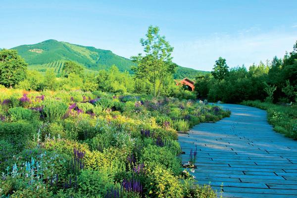 十勝千年の森(清水町)|まるでおとぎ話の世界! 五感で癒される「北海道ガーデン街道」をめぐる旅