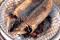 日本一「くさい?!」アンテナショップが竹芝に 『新島・式根938(くさや)フェア』開催中