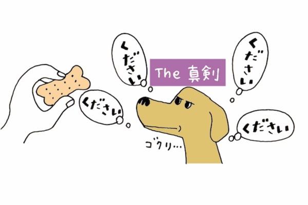20160919_03_3