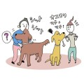 【犬の撮影テクニック】お悩み一問一答