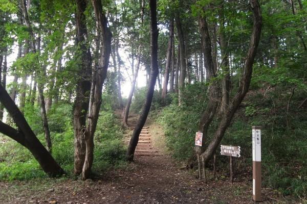 関東から日帰りで行けるオススメ山&温泉旅