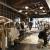 「男の趣味の部屋」がコンセプト! 新しくなった「エディフィス新宿」に潜入してみた