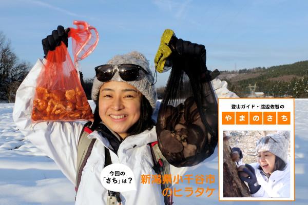 仲川希良の画像 p1_2