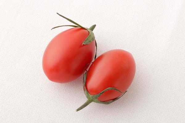 パスタソースのトマトは生が一番! トマト選び5つのポイント