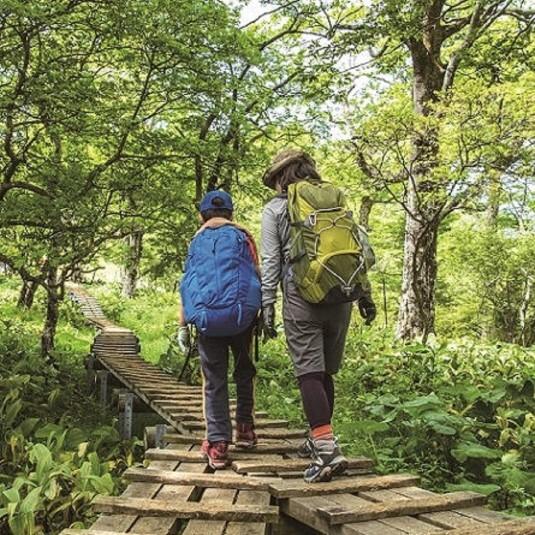 【イベント】キャラバンが新緑の富士山五合目までの親子登山教室を6月3日(土)に開催!