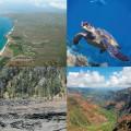 思わず涙。一生モノの思い出になるハワイの絶景