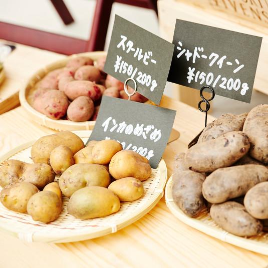 新鮮野菜が買える日曜朝市『用賀倶楽部マルシェ』開催!(7月16日)