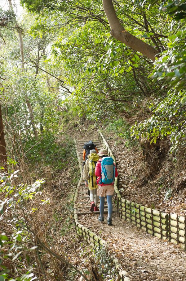 2-2浅間山ハイキングコース