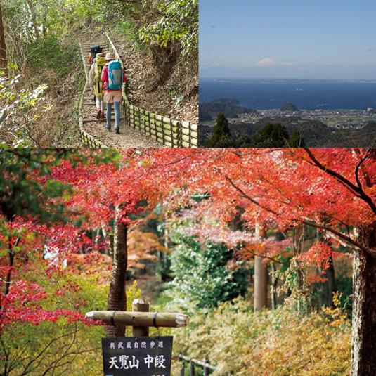 いよいよ紅葉の見ごろ! 日帰りハイキングコース【東京発】