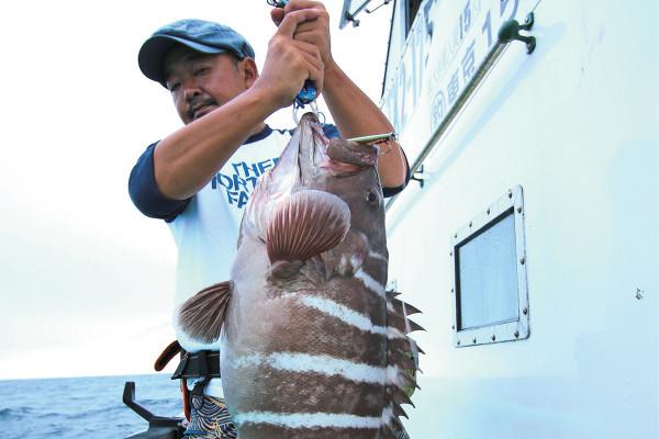 釣った魚を家に帰ってから捌くのはしんどい! そんな時は六本木のリストランテへ