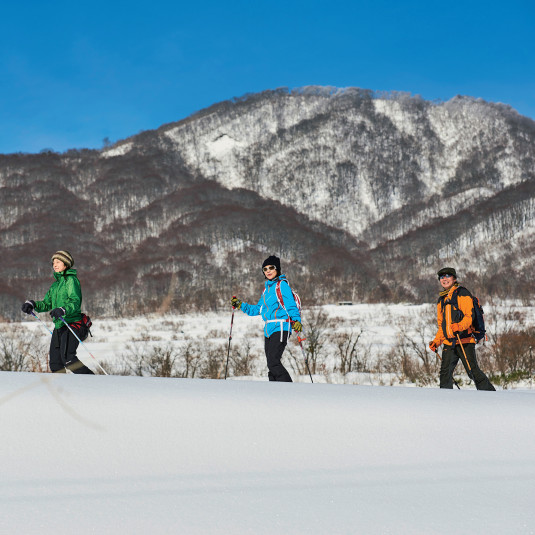 フィールドライフ No.58 2017 冬号
