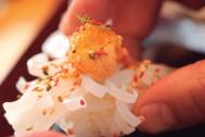 寿司大全 ~THE SUSHI~