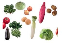 本当の旬を知ってますか? 意外と知らない『野菜の基礎知識』