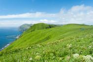 大自然を楽しみつくす! 島+トレッキングのよくばり旅プラン