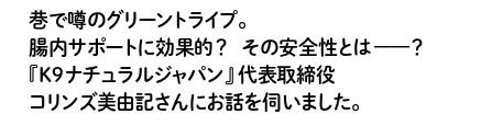 065_正_page-0001